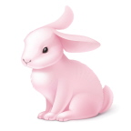 The Little Bunny Who Thought For Himself